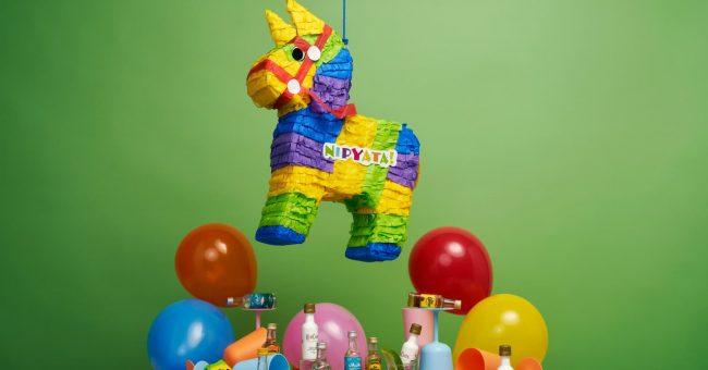 piñata pour garçon